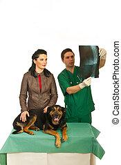 frau, mit, hund, an, tierarzt, buero