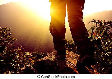 frau, wanderer, stehen, auf, berg spitze