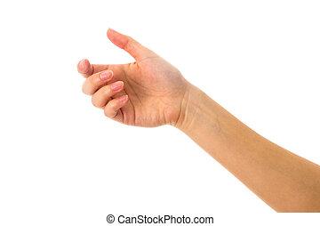 frau, weißes, hand holding, etwas