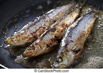 freír, sardinas, en, cacerola