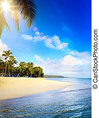 fredlig, bakgrund, sommar, tropical semester, beach;