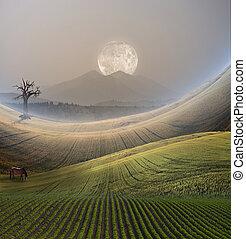 fredlig, landskap, med, fjäll