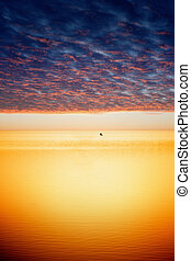 fredsommelige, solnedgang