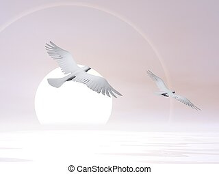 Free doves - 3D render - Two doves flying next to a big sun
