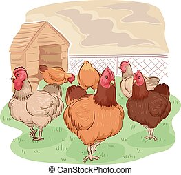 Free Range Chicken Coop - Animal Illustration of Different...