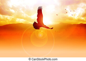 Freedom On The Sky - Silhouette illustration of an eagle...