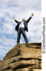Freedom - Happy businessman standing on the top of mount...