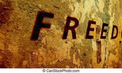 Freedom text on grunge background