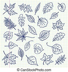 Freehand drawing autumn leaves items on a sheet of exercise...