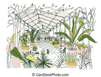 Freehand drawing of interior of tropical botanical garden ...