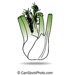 Freehand fennel - Freehand drawing fennel icon - vector eps...