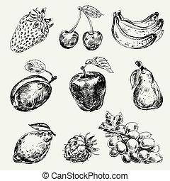 freehand, fruits., satz, zeichnung