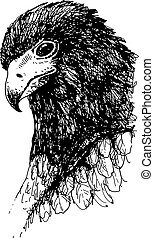 Eagle bird doodle hand drawn