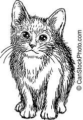 freehand sketch illustration of little cat, kitten doodle...