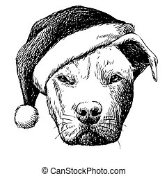freehand sketch illustration of pitbull dog with christmas santa hat, doodle hand drawn