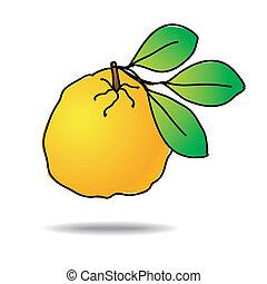 Freehand ugli fruit - Freehand drawing ugli fruit icon -...