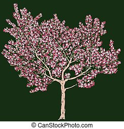 Freehand vector drawing of blooming cherry tree