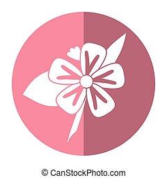 freesia flower tropical shadow