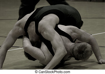Freestyle 4143 - Freestyle wrestling is a popular spring...