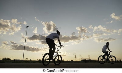 Freestyle biking of teenagers friends exercising their...