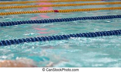 freestyle, piscine, natation