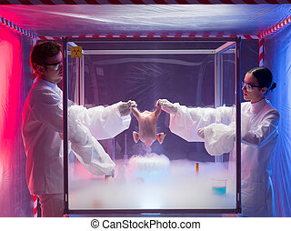 freezing a chicken in protection enclosure
