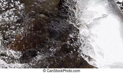 Freezing Forest Stream