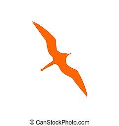 fregata ptáci, grafické pozadí