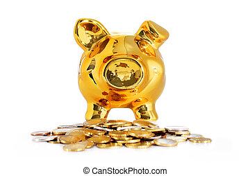 Freigestellt, aus, weißes,  bank, Schweinchen