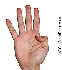 freigestellt, ausstellung, vier, finger, hand, weißes