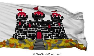 freigestellt, edinburgh, stadt, fahne, vereinigtes...