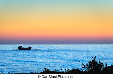 Freight ship in the sea