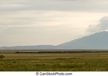 Freight train with steppe