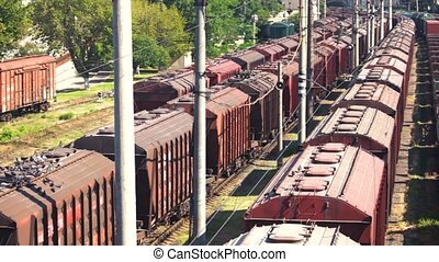 Freight trains on cargo terminal. Flock of pigeons and...