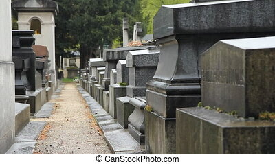 French cemetery in the rain. - Rain falls and drips off...
