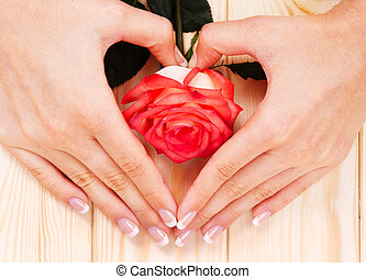 French manicure and red rose