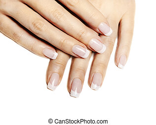 French Manicure - Beautiful female hands with french...