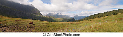 French mountains with green grass and horses from the Aravis pass, France, The Alps, Panorama
