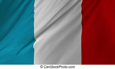 French official flag gently waving in the wind 2 in 1 -...
