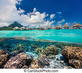 French Polynesia above and bellow water