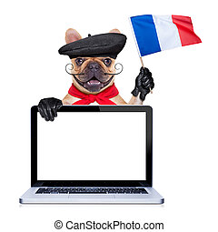 french bulldog with beret hat, waving flag of france , behind laptop pc computer screen and keyboard