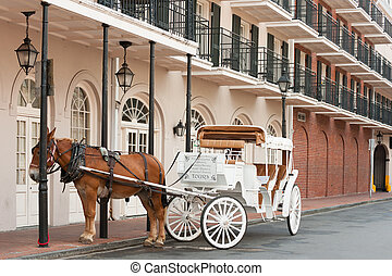 French Quarter Tour - Elegant horse-drawn carriage in French...