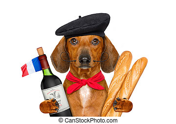 french  sausage  dog
