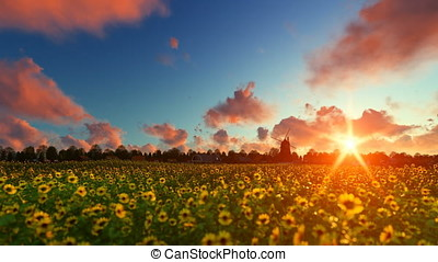 French sunflower village with old windmill against beautiful sunset