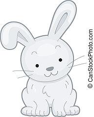 frente, conejo, vista