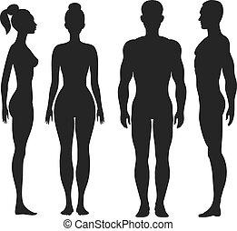 frente, e, vista lateral, silhuetas, de, homem, mulher