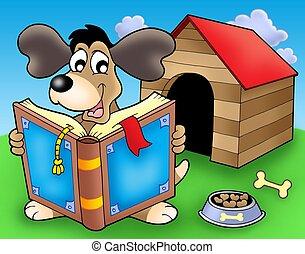 frente, libro, perro, perrera