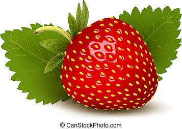 fresa, con, hojas, ., vector.