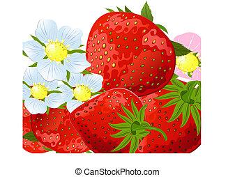 fresa, flores