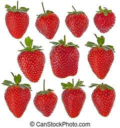 fresas, conjunto, aislado